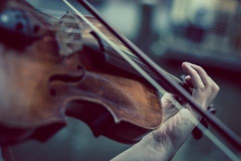 violin-violinist-music-classic