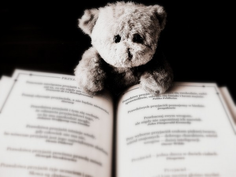 bear-toy-animal-teddy-child-book-reading