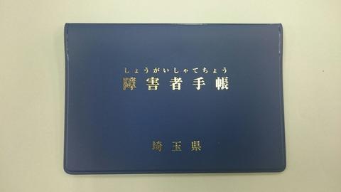 統一後の手帳の見本