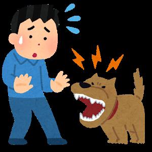pet_natsukarenai_dog_man